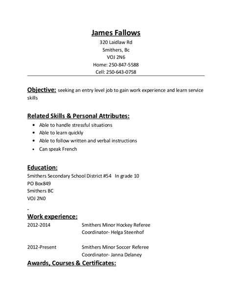 Hockey Resume Website by Resume