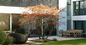 Kupfer Felsenbirne Schneiden : gartenblog geniesser garten lieblingspflanzen ~ Lizthompson.info Haus und Dekorationen