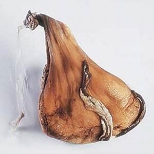 Wiki Information And Photos Of Callu De Cabreddu Cheese