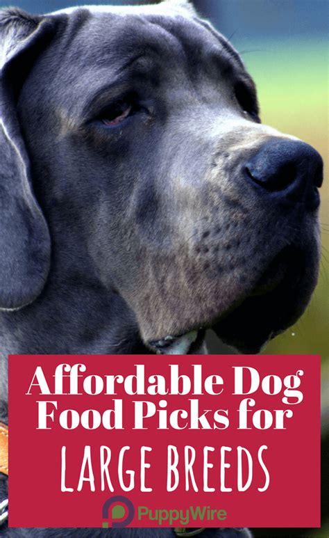 dog food  large breeds  top  picks reviews