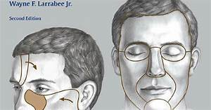 Principles Of Facial Reconstruction 2nd Edition
