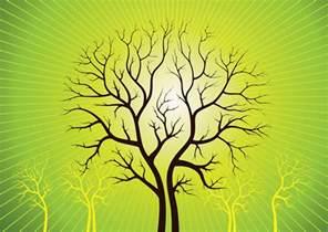 vidã o de mariage vector trees
