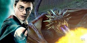 harry potter 10 best magical creatures ranked by