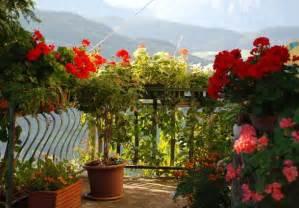 regal fã r balkon pin der sonnen balkon blumen f r balkonk sten k bel und co on balkon regal f r blumen