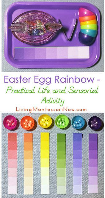 easter egg rainbow practical and sensorial activity 218 | 2fa60acd5728132708b9db467b6b8c58