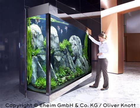 Oliver Knott Aquascaping - simon s aquascape