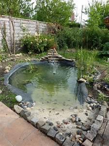 Jardin Avec Bassin : 24 impressionnant bassin de jardin avec cascade image ~ Melissatoandfro.com Idées de Décoration