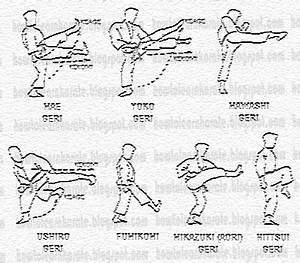 How to Learn Karate and Japanese Martial arts techniques