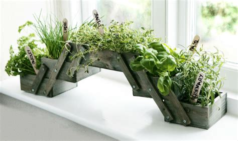 Window Herb Pots by Shabby Chic Folding Wooden Herb Planter Kit Seeds Kitchen
