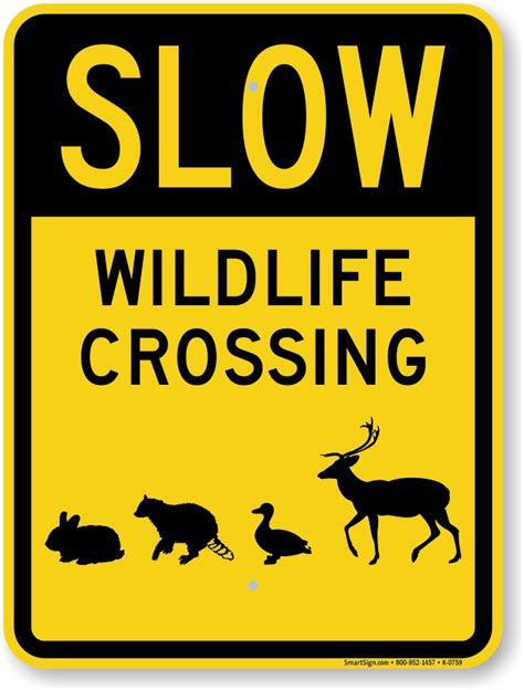 Moose And Elk Crossing  Animal Crossing Signs. Cash Advance Debt Consolidation. How Long Does It Take To Get A Master Degree. Construction Home Loan Rates. Stanford Psychology Graduate Test In Detox. Optionshouse Vs Tradeking Mulberry Child Care. Free House Insurance Quotes Online Stock Buy. Business Cell Phones Reviews. How To Know If You Have Allergies