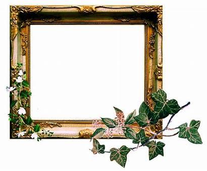 Frame Clipart Clip Transparent Background Deviantart Ornate