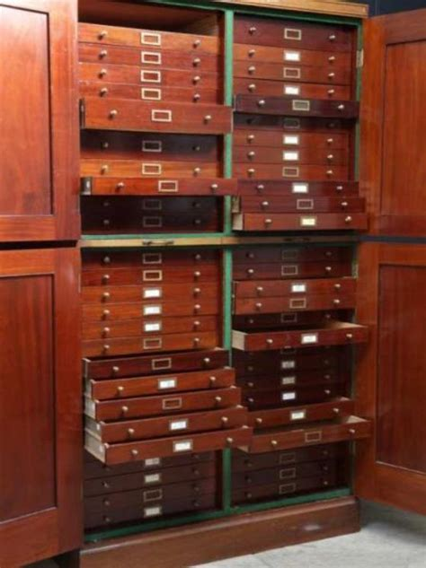 coin cabinets for sale antique specimen british museum cabinets for sale