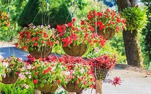 Blumen Für Garten : garten deko f r den sommer selber machen tolle diy tipps ~ Frokenaadalensverden.com Haus und Dekorationen