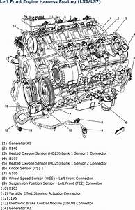 Lt1 Engine Harness Diagram