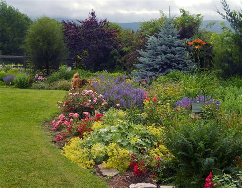 easy care flower beds how to create easy care garden beds and borders completehome