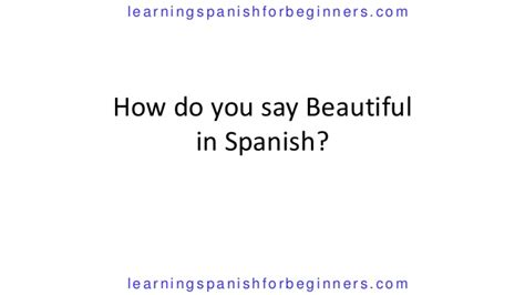 How Do You Say Beautiful In Spanish. Total U S Credit Card Debt St Paul Library. Credit Card Merchant Fee Dental Therapist Job. Online English Certificate Programs. Vintage Kitchen Supplies Build Server Computer. Furnace And Air Duct Cleaning. Domain Registration Paypal Liposuction In Va. Bottom Line Realty & Property Management. Psychology Universities In Usa