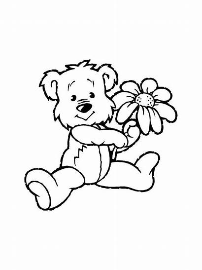 Coloring Hug Bear Colorear Flores Dibujos Following