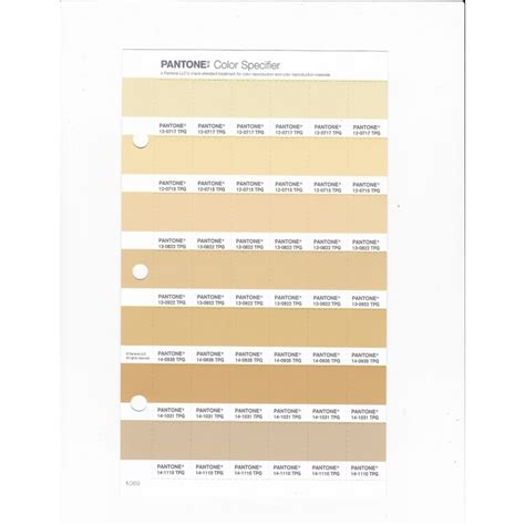 pantone   tpg sunlight replacement page fashion