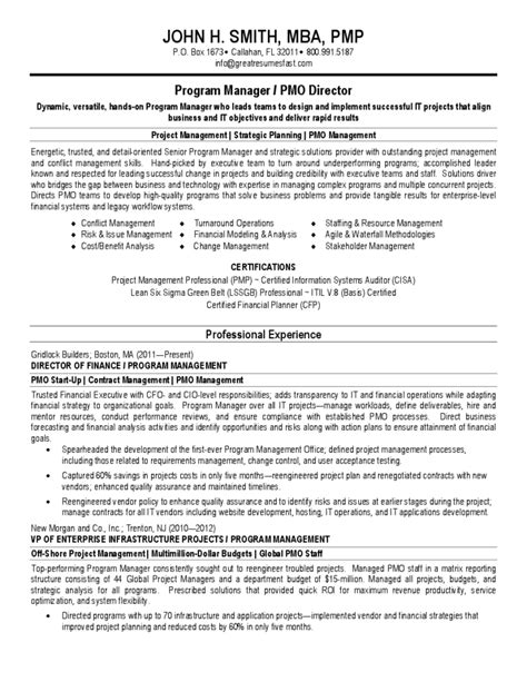 basic project manager cv template free