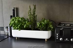 Jardiniere Sur Roulette : jardini re pour aromates en c ramique blanche blume de bellila ~ Farleysfitness.com Idées de Décoration