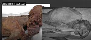 World's oldest figurative tattoos found on 5,000-year-old ...