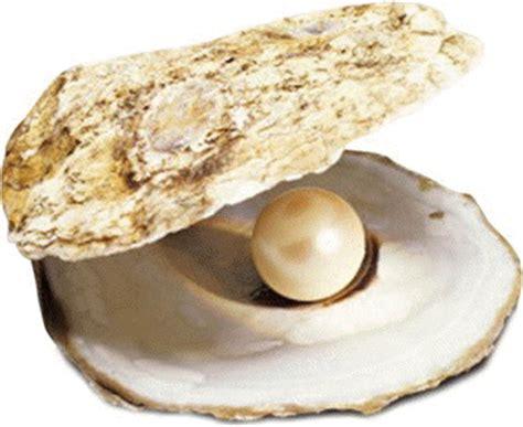 le berger l perle la magie des perles de liliane
