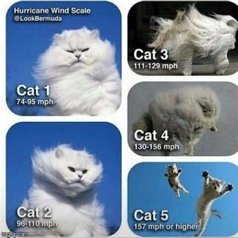 prepared  stay safe   categories hurricane preparation chart imgflip