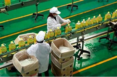 Alimentos Industrial Procesador Industrias Senati Pe Edu