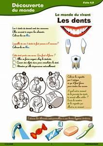 Pro Des Mots 715 : passerelle cp ce1 le monde du vivant fichesp ~ Medecine-chirurgie-esthetiques.com Avis de Voitures