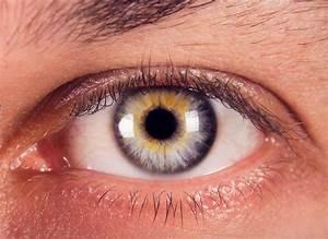 El Ojo Y Las Razas Humanas - Blog De Ojos