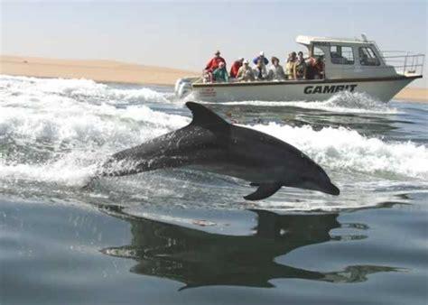 Catamaran Boat Cruise Walvis Bay by Dolphin Cruise Walvis Bay