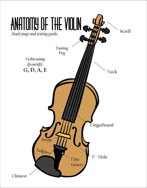 Parts The Violin Poster Google Search