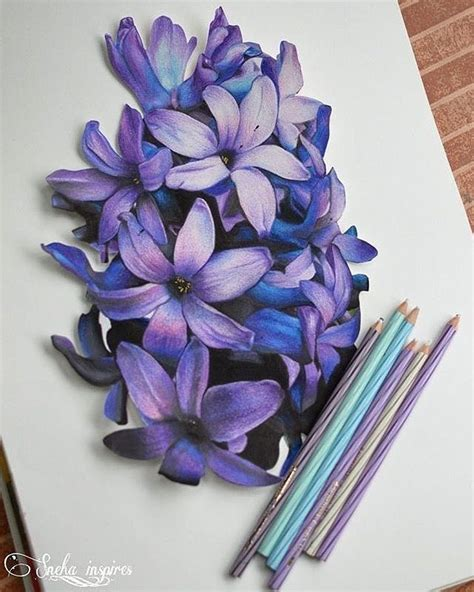 Coloring Flowers With Colored Pencils by 1473 Best Colored Pencil Artist And Info Images On