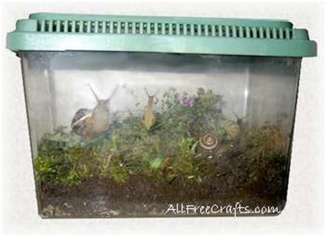 pet garden snails