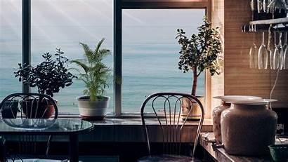 Window Interior Background Flowers Furniture Widescreen Fhd