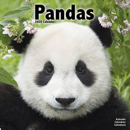 pandas wall calendar avonside walmartcom