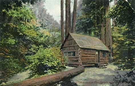 muir woods cabins 901 best cabins images on log cabins log