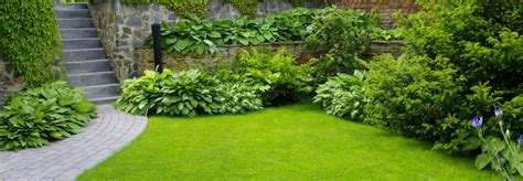 expect   landscape design process raleigh nc