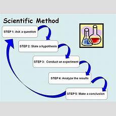 Mr Considine's Science Scholars Introduction To The Scientific Method