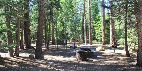 This is a large campground with individual and group camping. General Creek Campground - Sugar Pine Point State Park ...