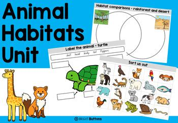 animal habitats worksheets  bright buttons teachers