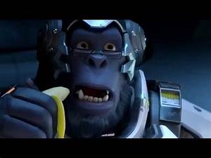 Overwatch39s Strong Animal Heroes And That One Winston Pose