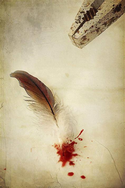bird breaks  blood feather