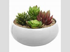 65 inch Round White Ceramic Succulent Plant Flower