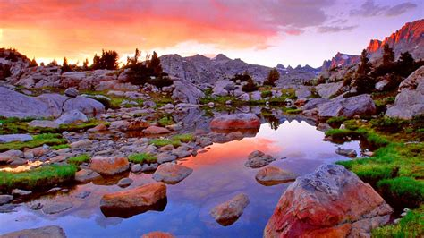 cool and beautiful nature desktop wallpaper image