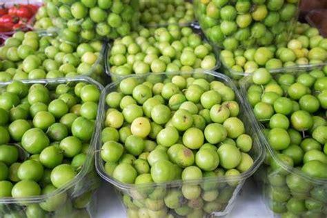 reasons    eat  indian gooseberry amla