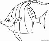 Coloring Angelfish Outline Coloringall Fish Pesci Printable Colorare Drawing Yellow Disegni Drawings Disegnare Any Idee Draw Pesce Angel Automatically Device sketch template