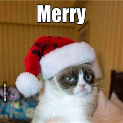 Merry Christmas Cat Meme - meme center kusali profile