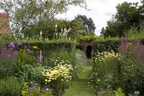 How To Create A Cottage Garden Using Indigenous South