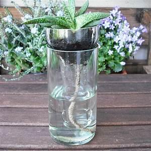 Wann Wein Pflanzen : tipps for cutting bottles flaschen schneiden coolste idee flasche schneiden glasflaschen ~ Orissabook.com Haus und Dekorationen